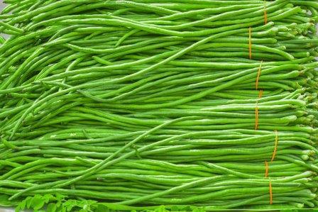 Long Yard Beans/ Vaal
