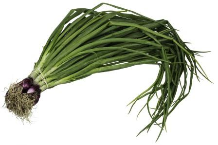 Spring Onion per bunch