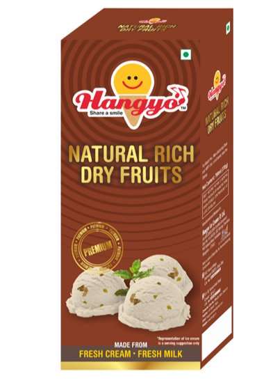 Hangyo Natural Rich Dry Fruits Ice Cream Box - Family Pack