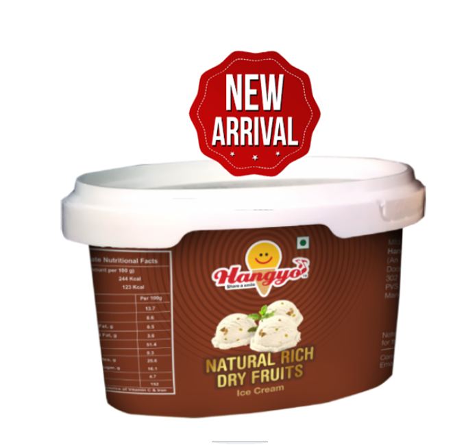 Hangyo Natural Rich Dry Fruits Ice Cream  125 ml Tub