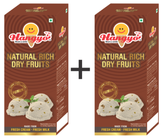 Hangyo Natural Rich Dry Fruits (Judwa Pack)  700 ml Box