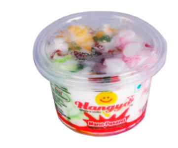 Hangyo Mann Pasand Ice Cream 100 ml cup