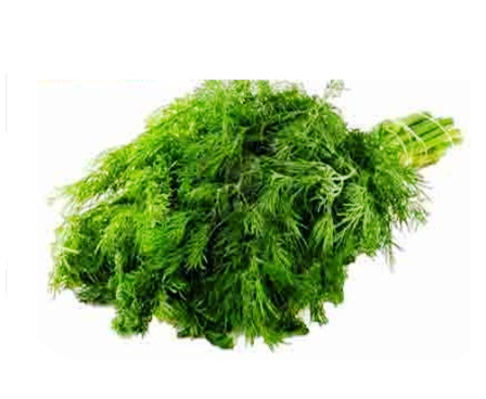 Shepu/ Dill Leaves Per Bunch