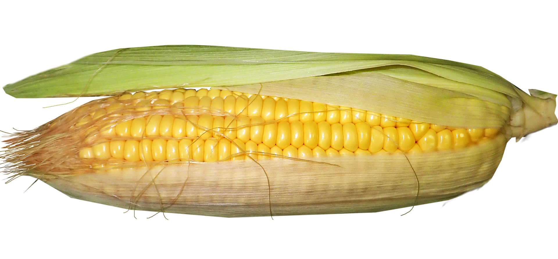 Sweet Corn (5 Pieces)