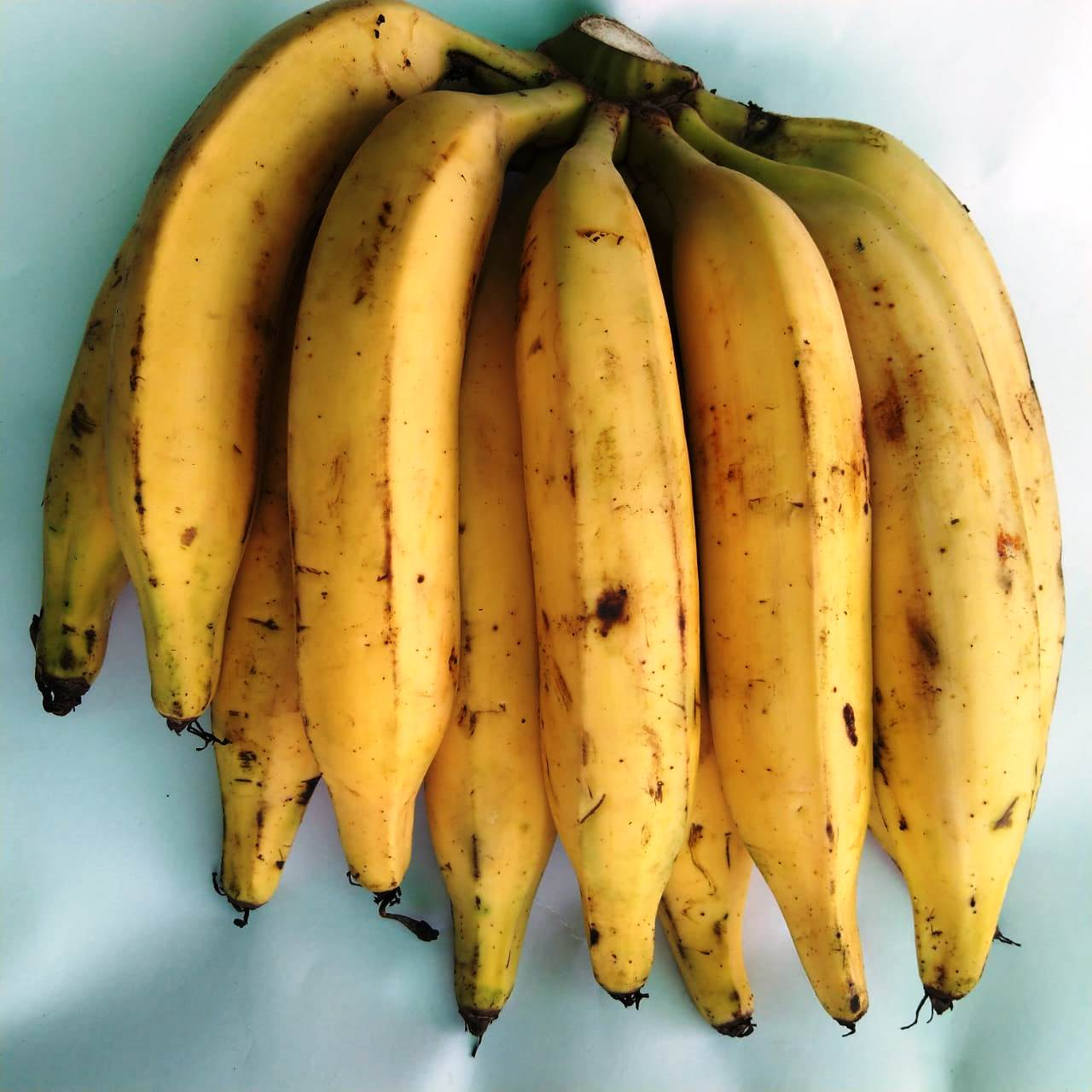 Banana (Mandoli) Per Kg