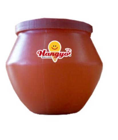 Hangyo Matka Kulfi 100 ml