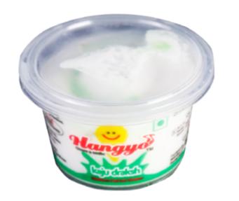 Hangyo Kaju Draksh Ice Cream 100 ml cup