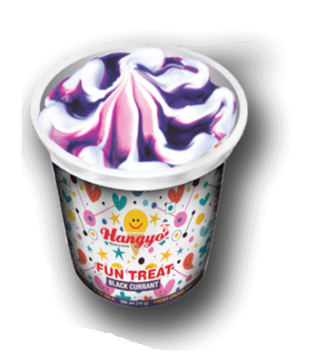 Hangyo Fun Treats Ice Cream - Black Currant  125 ml