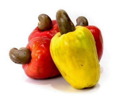 Cashew Apple - without Seed (Pack of 10)